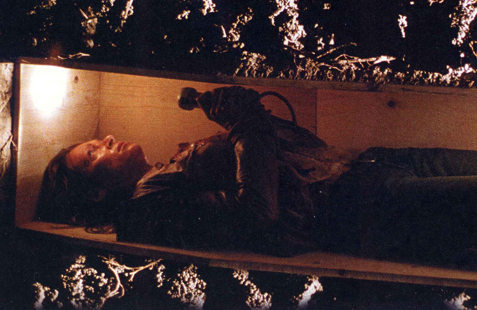 Fangoria '04: Kill Bill Volume 2