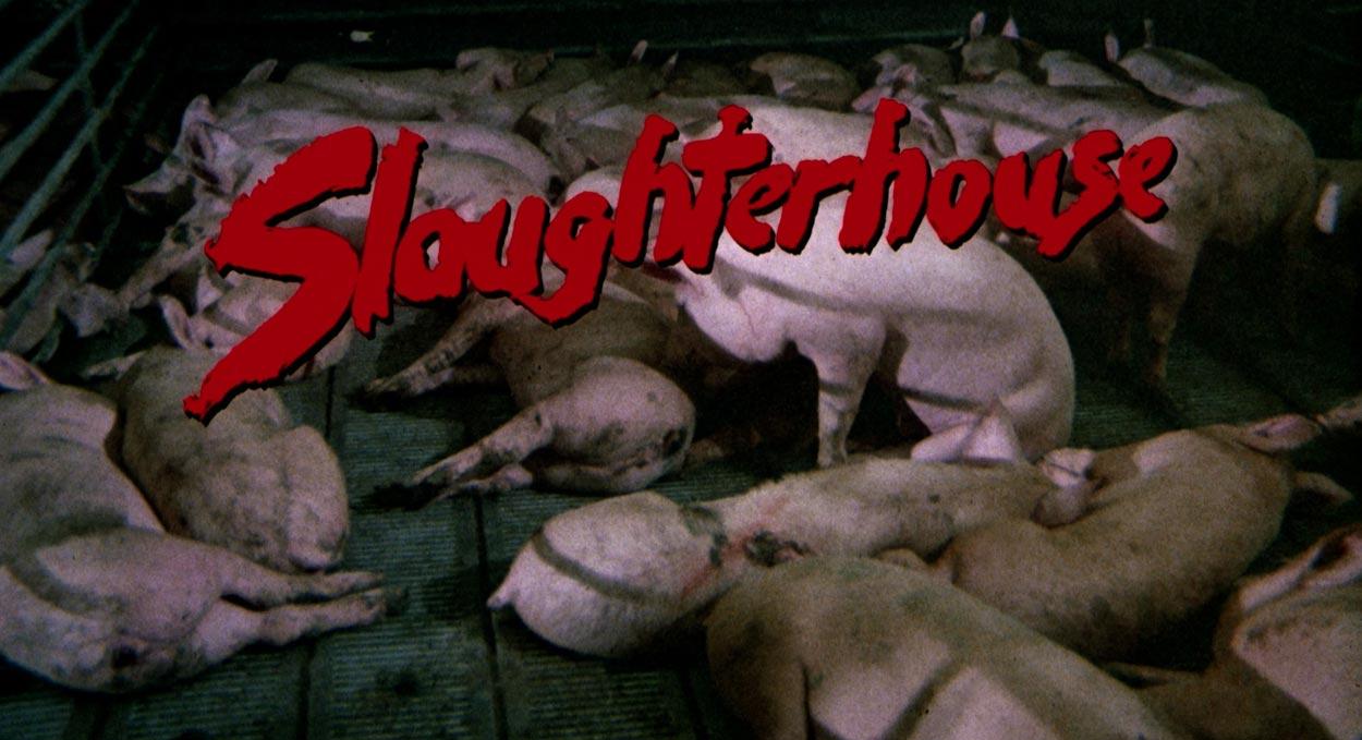 slaughterhouse-1